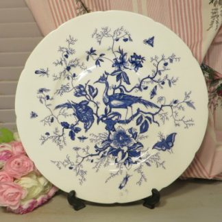 Coalport 'Cairo' Dinner Plate.  A stunning plate in the 'Cairo' pattern by Coalport.